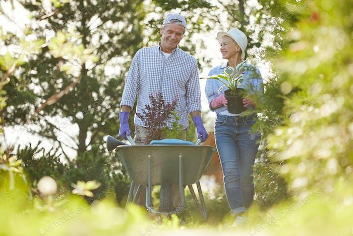 Paar Seniorenbauern im Garten