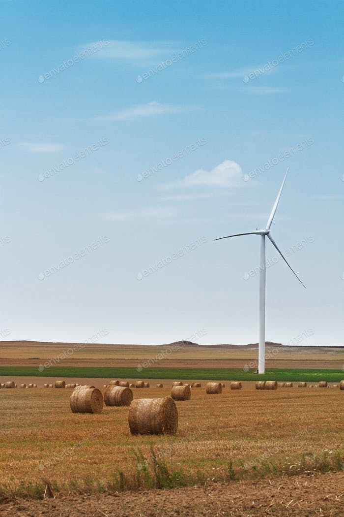 eolian wind turbine with wheat hay rolls