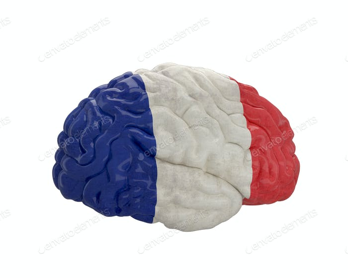 France. Flag on Human brain. 3D illustration.