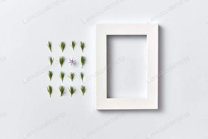 Frühlingspflanzenmuster aus jungen Tannennadeln und leerer Rahmen auf hellem Hintergrund
