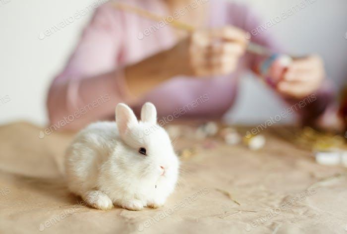 Símbolo de Pascua