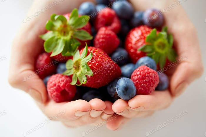close up of young woman hands holding berries