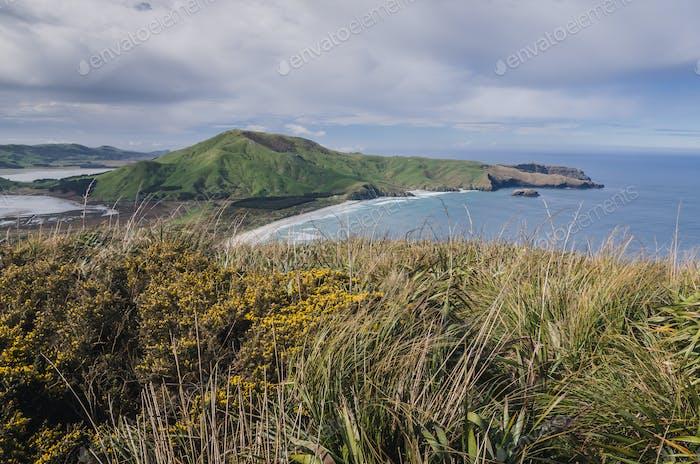 Coastal track, New Zealand