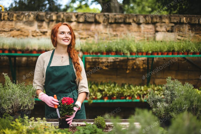 Smiling florist in apron and pink gloves using little garden shovel planting a beautiful flower