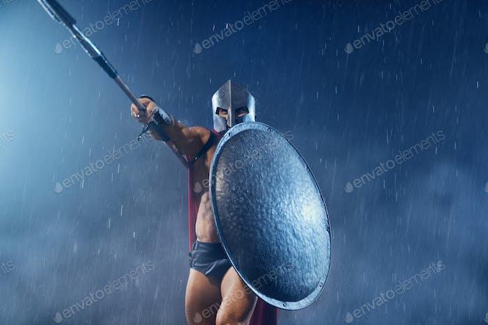 Spartan warrior spear up