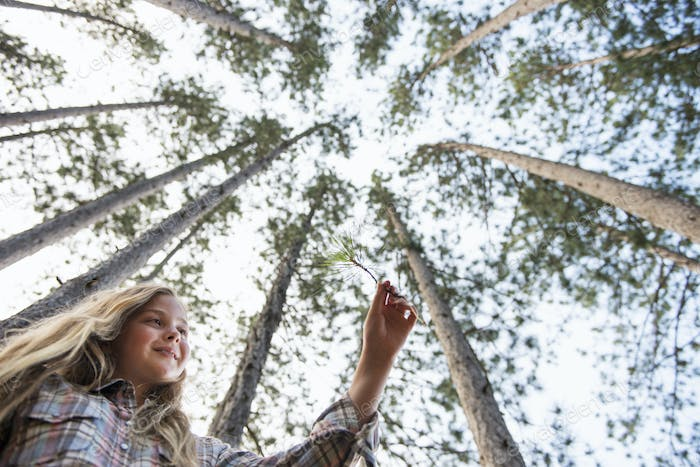 A young girl in the woods, walking through pine trees.