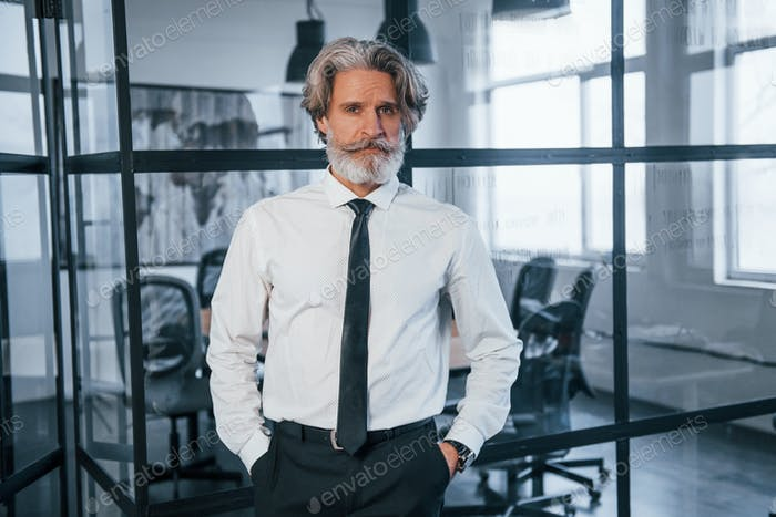 Confident mature businessman with grey hair and beard in formal clothes is in the office