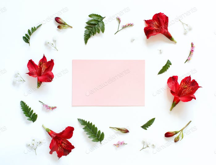 Red and white flowers on a white background