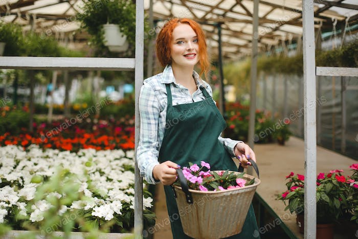 Beautiful florist in apron standing with metal basket with flowers in hands