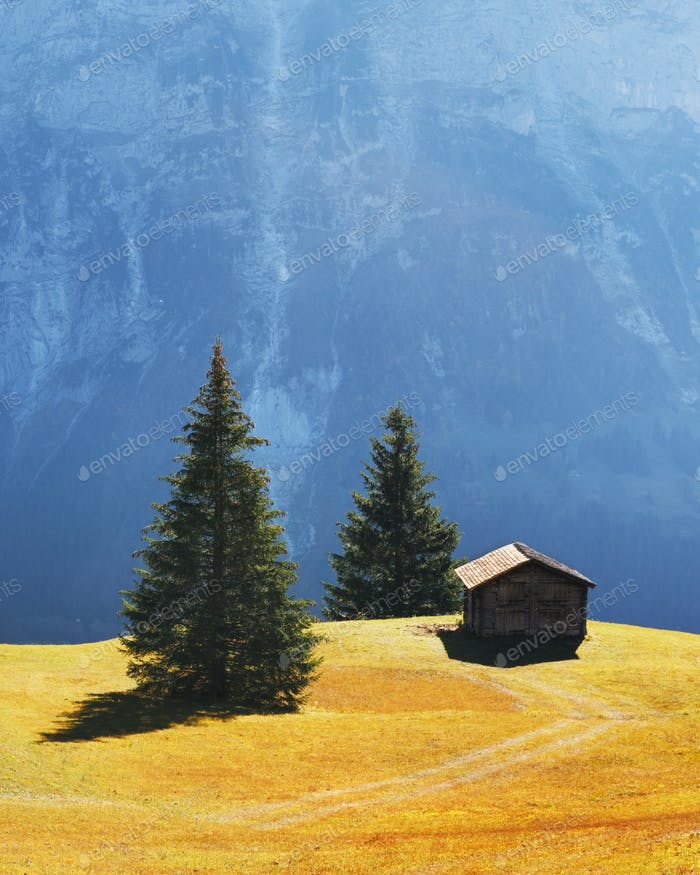 Picturesque autumn landscape in Grindelwald village