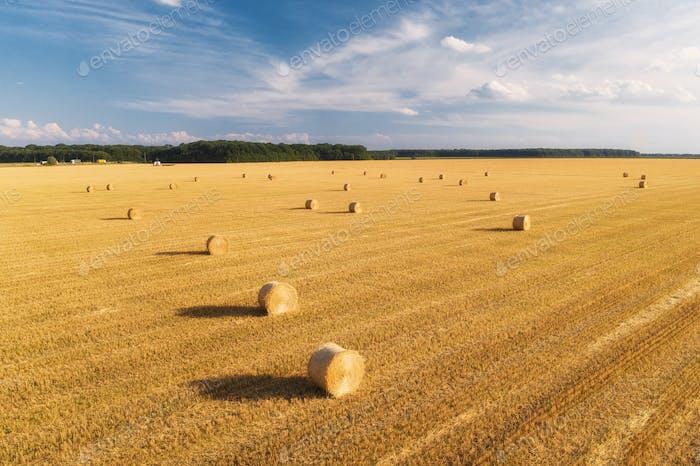 Aerial view of hay bales in summer. Top view of hay stacks