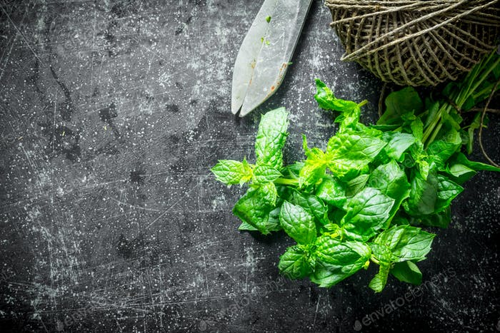 Fresh mint with old twine.