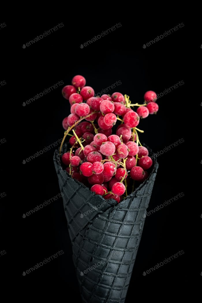 Black wafer cone with frozen redcurrant fruits. Ice cream