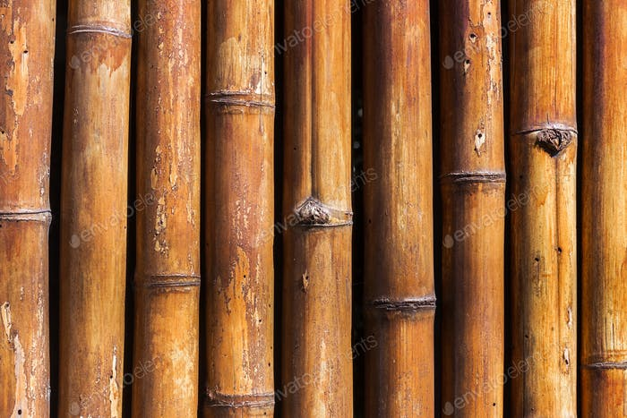 Old yellow bamboo texture background