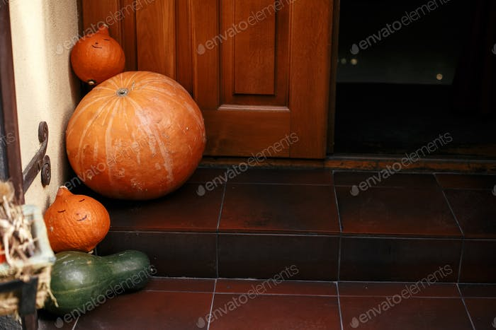 Pumpkins and squash in city street, holiday decorations store