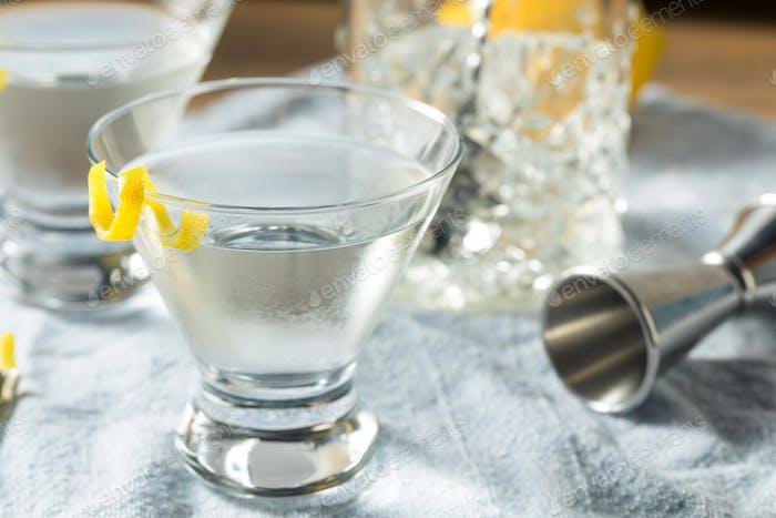 Boozy Refreshing Gin Martini