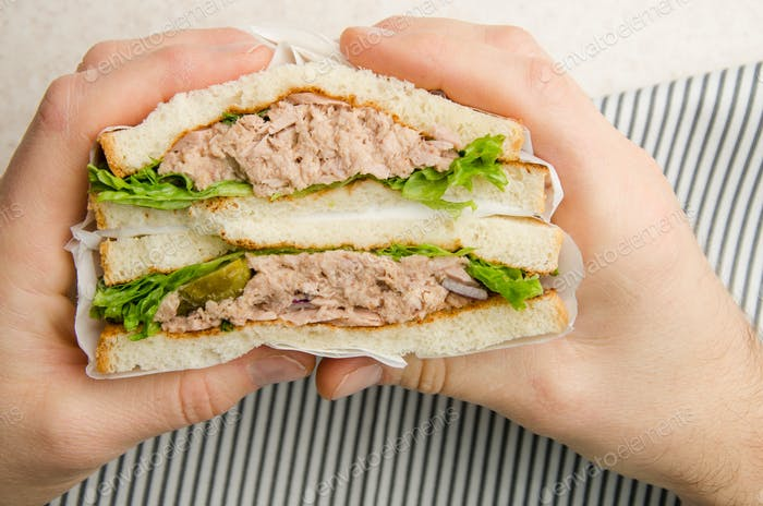 Umwickelte Thunfisch-Sandwiches mit Salatgurken und Zwiebeln