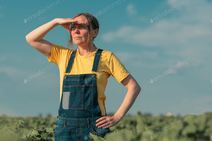 Sunflower farmer posing in field