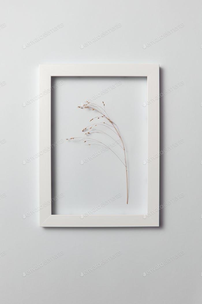 Natürlicher organischer Rahmen mit trockenem Pflanzenzweig auf hellgrauem Hintergrund