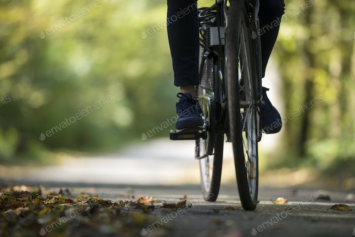 Person riding a bicycle along a fall road