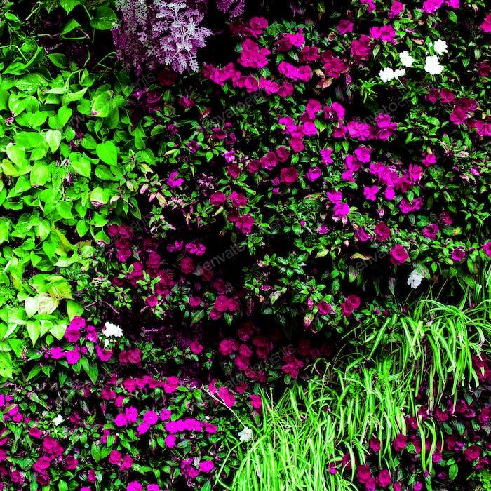 Flowers and greenery background Minimal art design idea