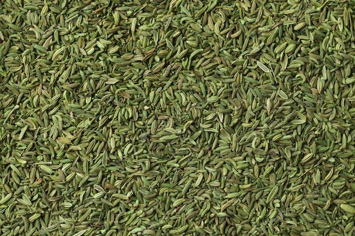 Green egyptian anise fruit