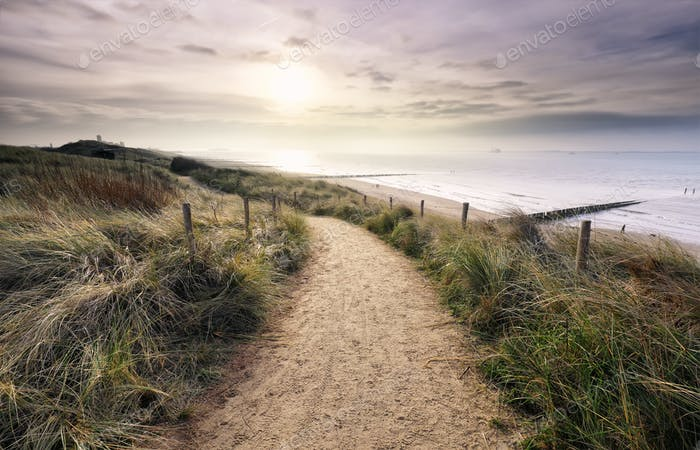path on dune with view on North sea beach