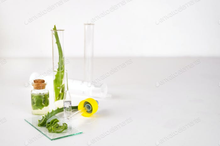 Aloe vera oil in glass bottle with sliced of aloe vera gel