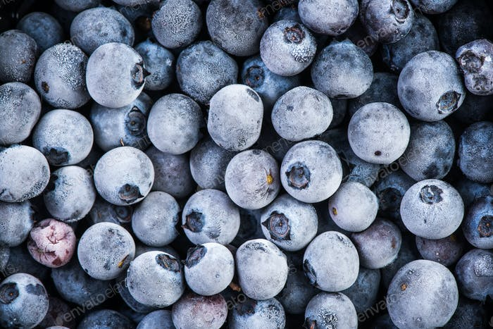 Frozen blueberry fruits, close up