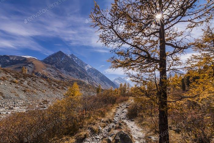 Scenic mountain landscape in the autumn. Altai Mountains.
