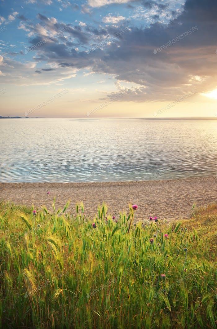 Schöne Natur und Meereslandschaft.