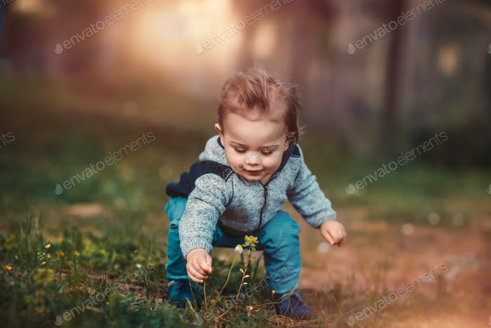 Baby boy collect flowers