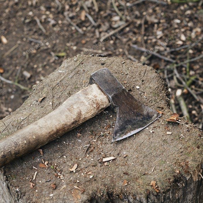 Axe on a tree stump