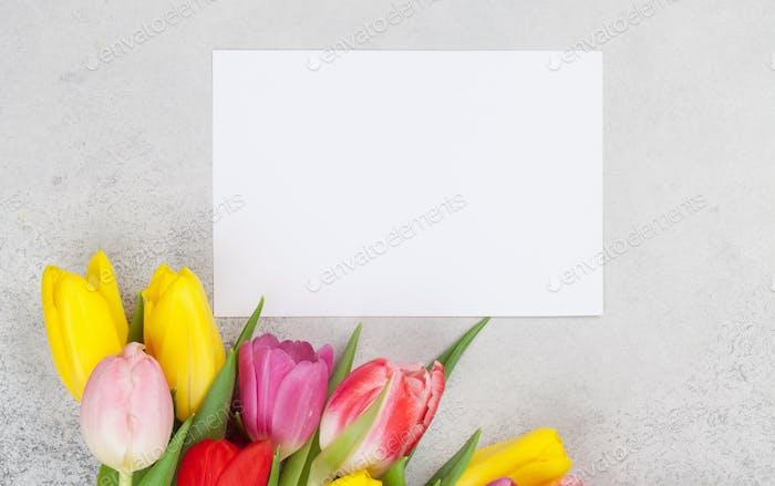Carte de vœux de Pâques avec tulipes de printemps