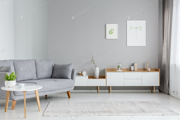 Real photo of a spacious living room interior with gray sofa sta Foto von  bialasiewicz auf Envato Elements