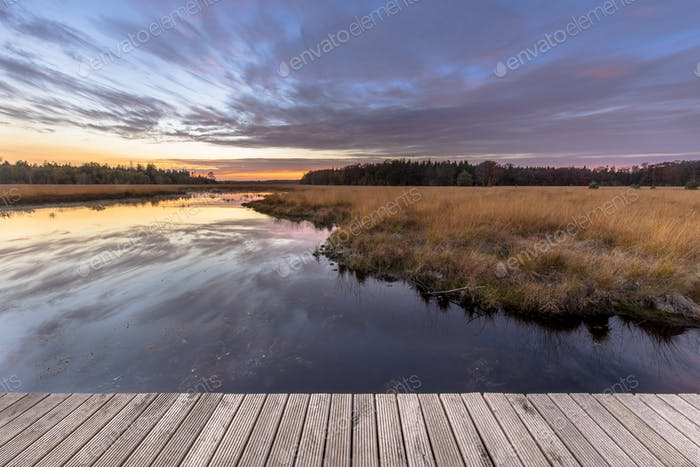 Boardwalk in natural heathland fen