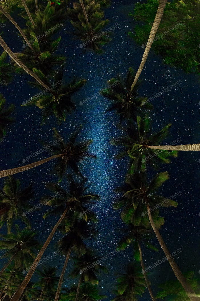 Milky way in tropics.