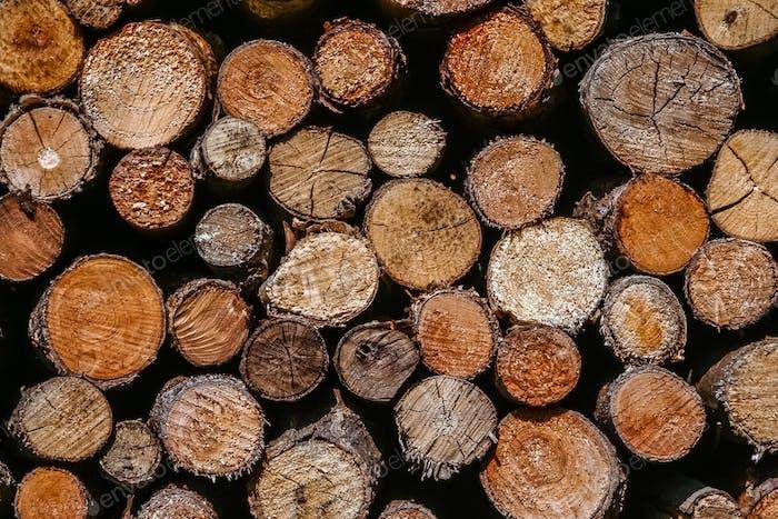 Haufen Brennholz