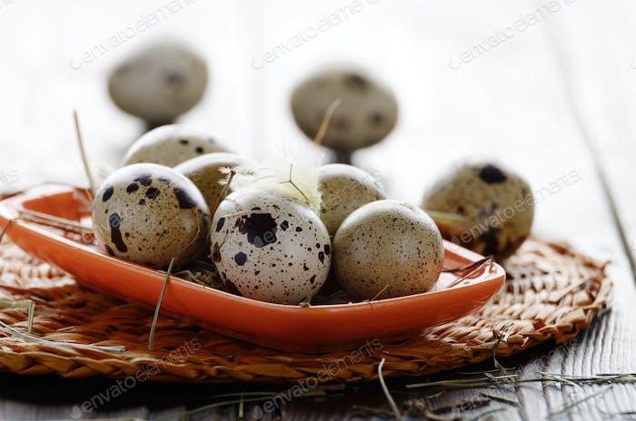 Fresh organic quail eggs in orange clay plate on wooden rustic k