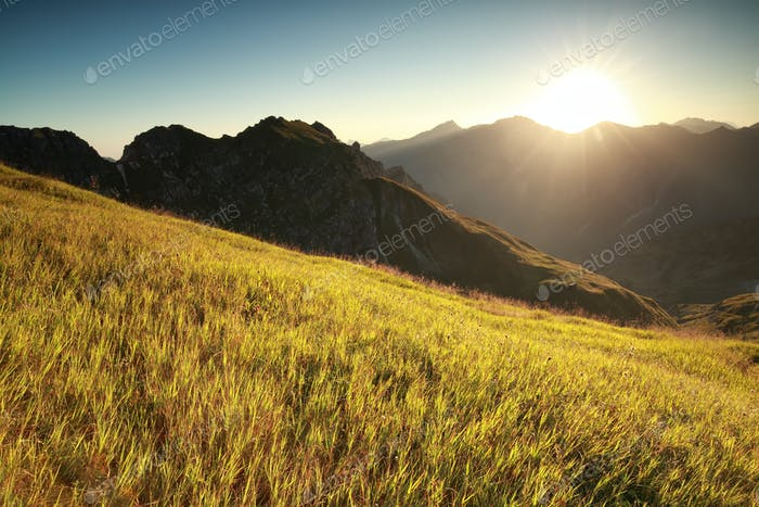 morning sunshine over high alpine meadow
