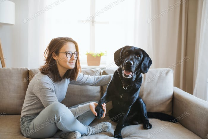Teenage girl sitting on a sofa indoors, playing with a pet dog.