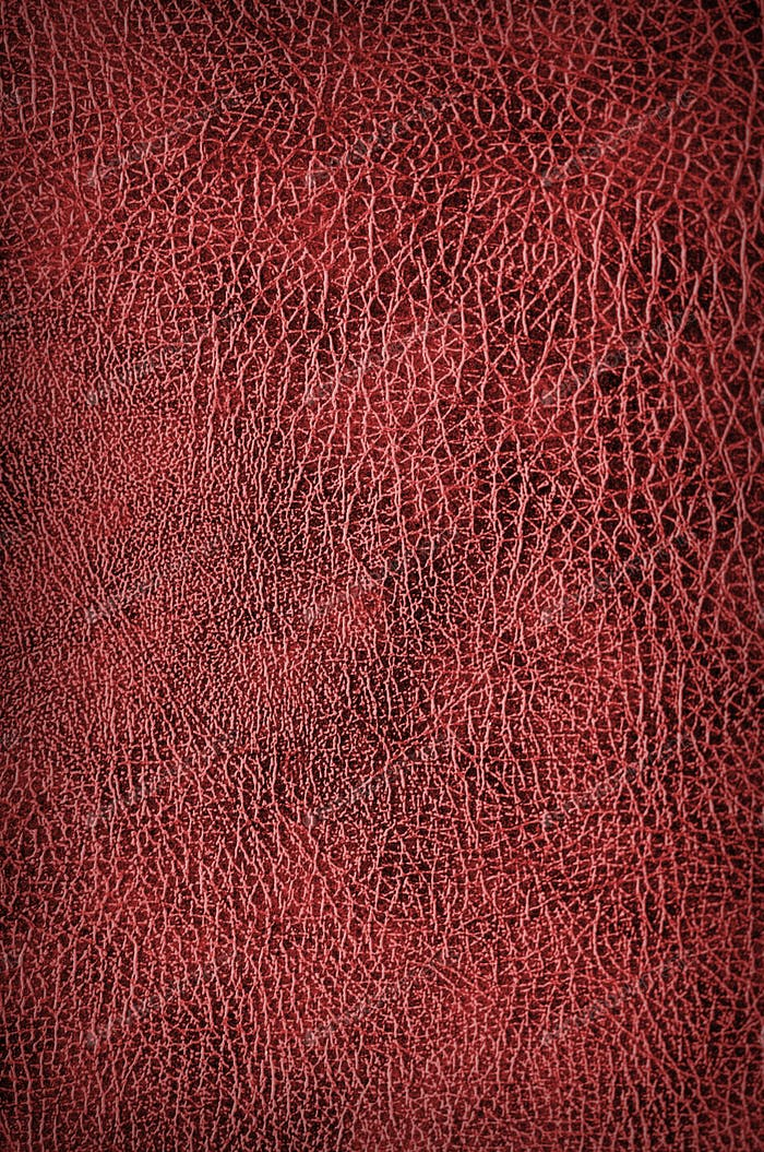 red croccodile Leather background