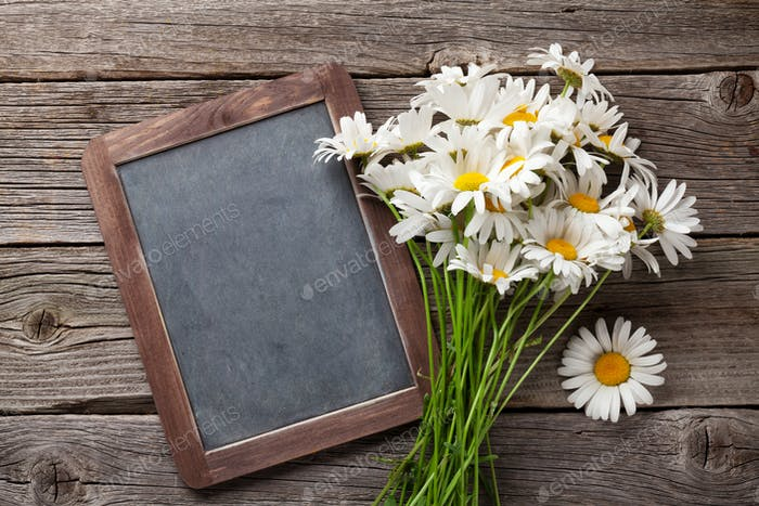 Blackboard for your text and chamomile