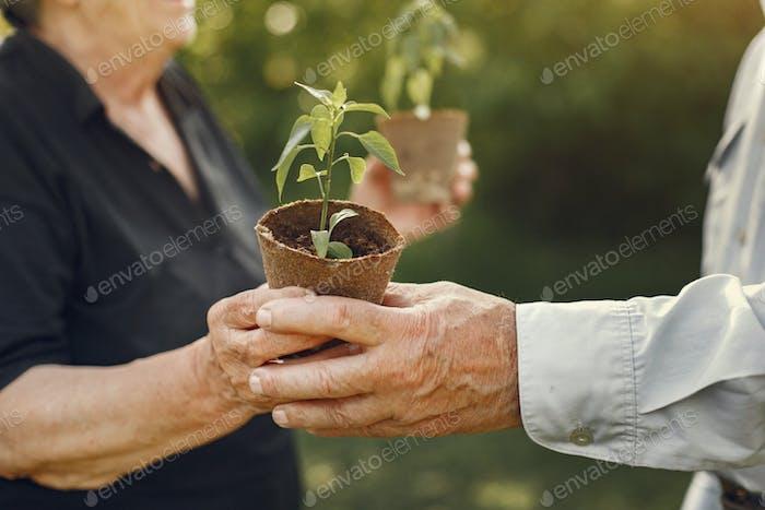 Porträt von Senioren in einem Hut Gartenarbeit