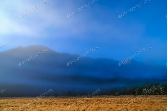 Mist and fog in a valley in New Zealand Alps
