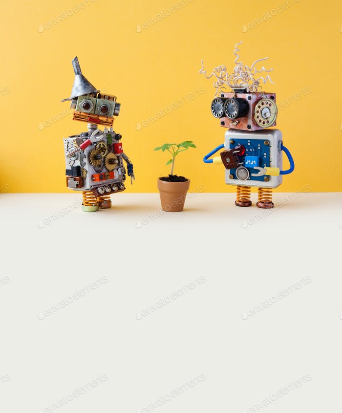 Two friendly robots and green plant in a flower clay pot.