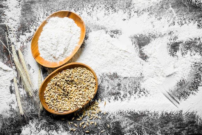 Mehl und Weizenkorn in Schalen mit Ährchen.