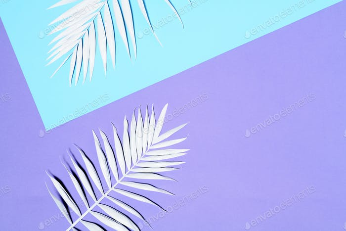 Arrangement of white palm leaves