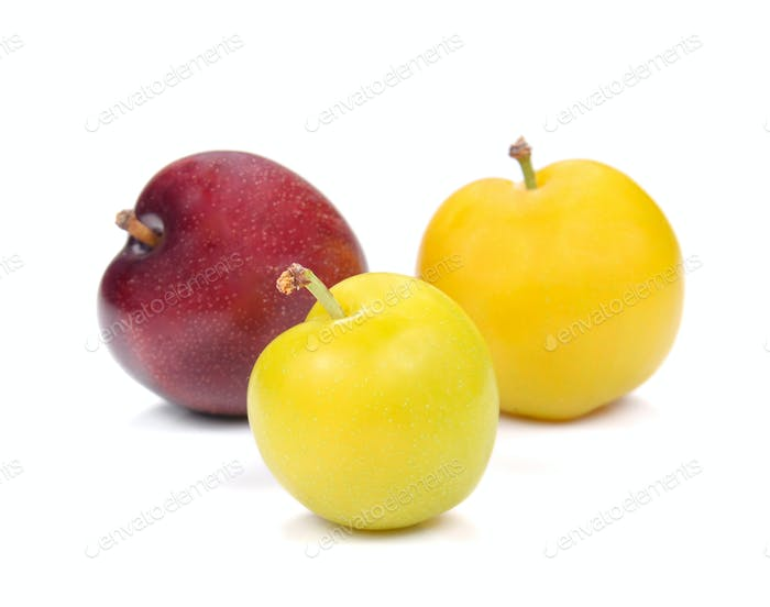 Yellow,Red Ripe plum on white background.