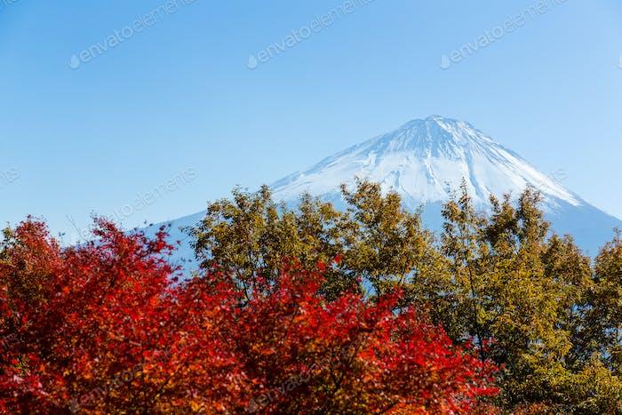 Koyodai Plateau